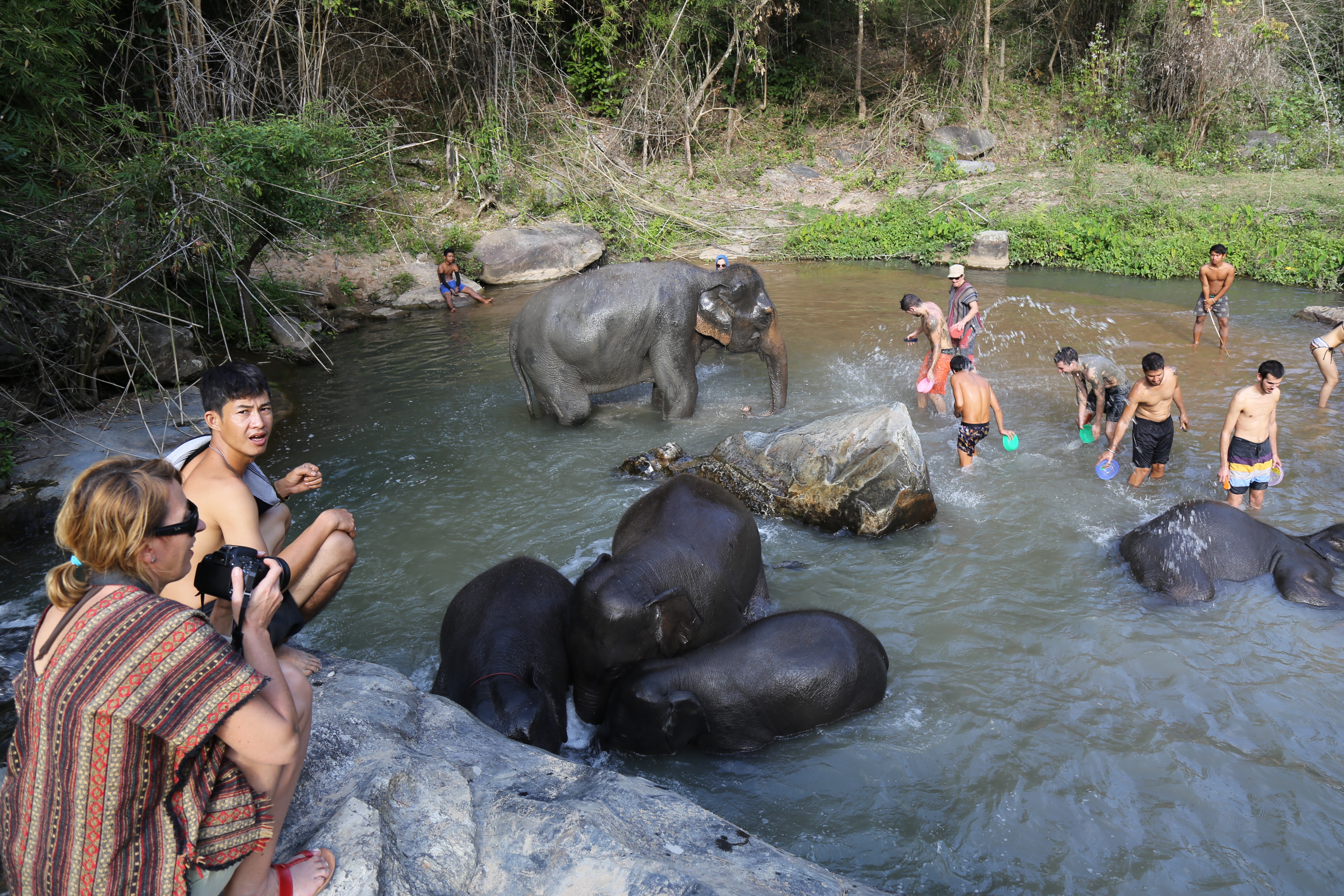 Banho de cachoeira com elefantes. (Foto: Nathalia Tavolieri / Viagem em Detalhes)