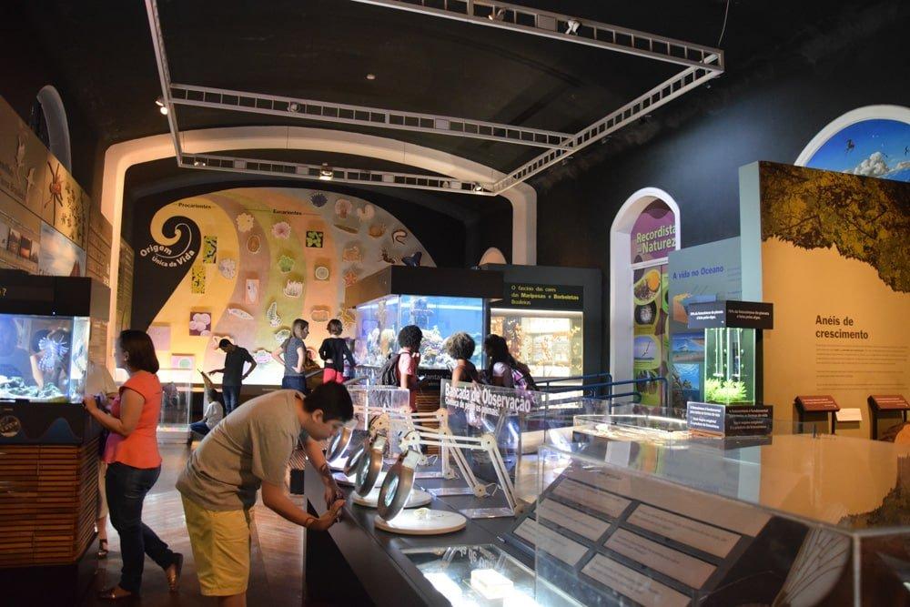 Área vida do Museu Catavento Cultural, ótimo passeio para fazer com crianças em São Paulo! Conheça o restante das exposições nesse post!