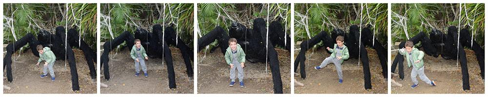 Veja alguns dos melhores lugares para tirar foto com crianças no Beto Carrero World nesse post!