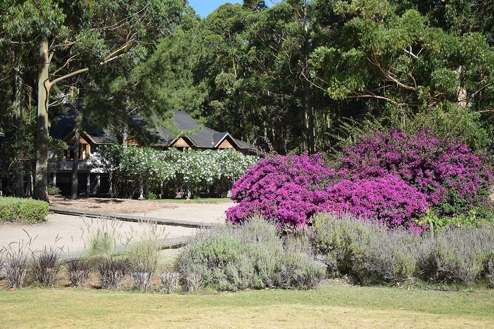 Veja a resenha completa do Hyatt Resort & Spa em Carmelo, região vinícola do Uruguai