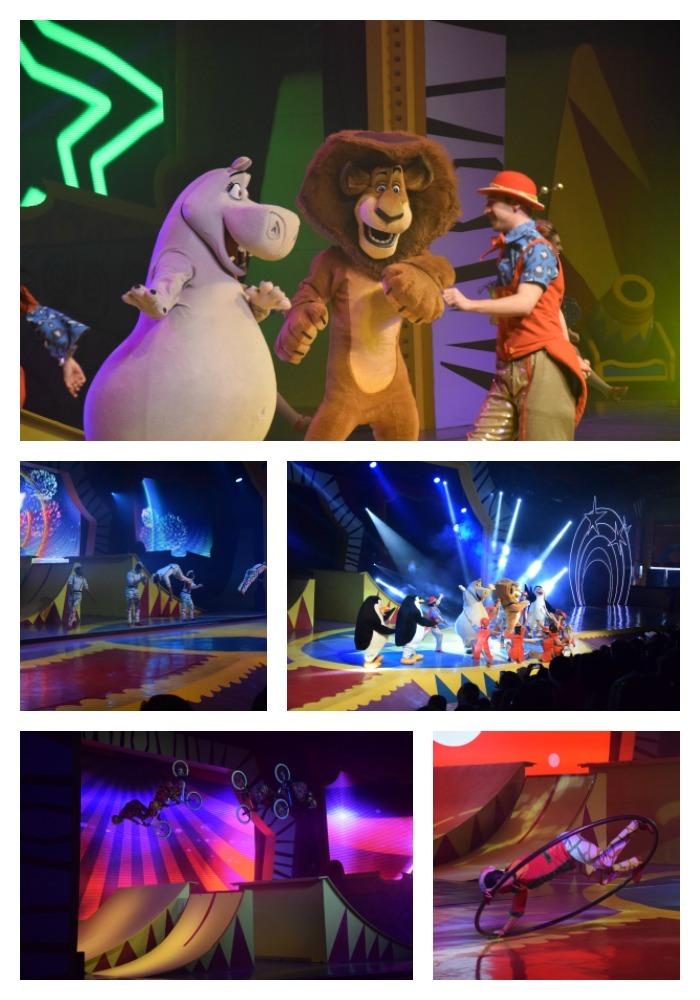 O show do Madagascar é um espetáculo imperdível no Beto Carrero!