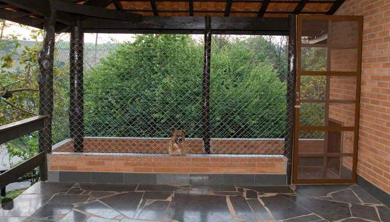 Campo dos Sonhos Pet Friendly